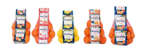 Darling Citrus Packaging Lineup-1