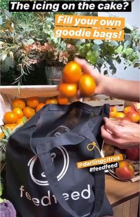 FeedFeed2