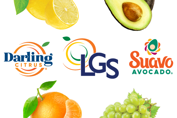 LGS_Darling-Squeez_LP-Header-logo-mobile-2