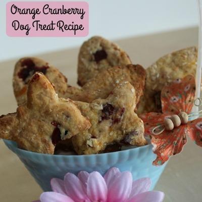 Orange-Cranberry-Dog-Treat-Recipe-1-1-1